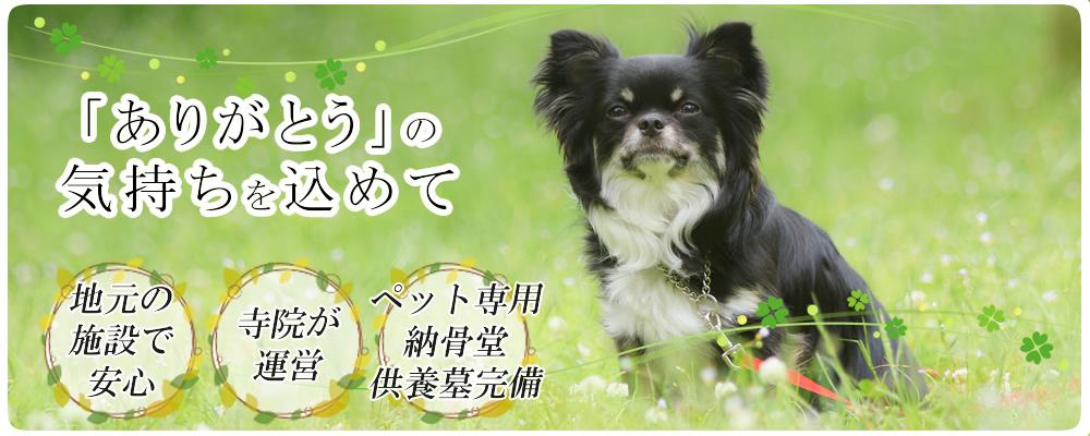 ペットメモリアル円花~まどか~の3つの安心